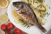 Grilled Sparus Aurata or gilt-head bream fish with bolied potato poster