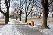Relaxation atmosphere in the park Komenskeho sady in winter poster
