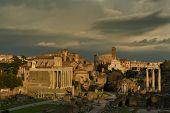 Beautiful evening light at the Forum Romanum Rome Italy poster