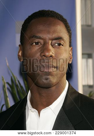 LOS ANGELES - JUL 13:  Isaiah Washington at the ABC Summer Press Tour Party 2004  on July 13, 2004 in Century City, CA.