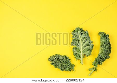 Creative Layout Made Of Kale Leaves On Blue Background.