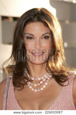 LOS ANGELES - JUL 13:  Teri Hatcher at the ABC Summer Press Tour Party 2004  on July 13, 2004 in Century City, CA.