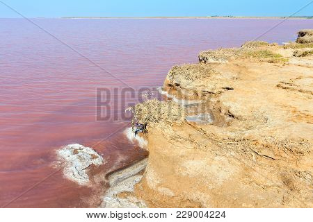 Pink Extremely Salty Syvash Lake, Colored By Microalgae. Also Known As The Putrid Sea Or Rotten Sea.