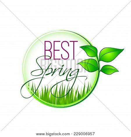 Best Spring Icon Design Of Green Leaf And Grass For Springtime Wishes Or Seasonal Holiday Greeting C