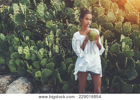 Young Sexy Brazilian Girl Is Standing In Front Of Green Hedge Of Cactuses And Drinking Coconut Water