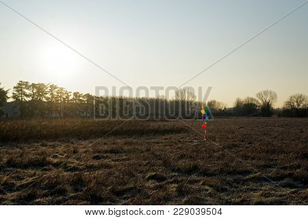 Colorful Balloon In The Autumn Field. Funny Mood, Prepare For Celebrating, Holiday Event Or Party.