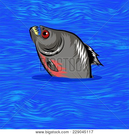 Cartoon Fish Swimming In Blue Water Background