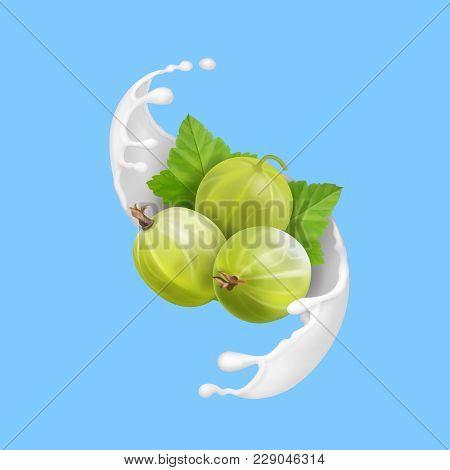 Ripe Berry Green Gooseberry In Milk Splash Or Liquid Yogurt.