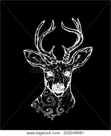 Illustration Of A Deer With Peacock Feathers In Horns. Black And White Vector Of Decorated Deer. Cha