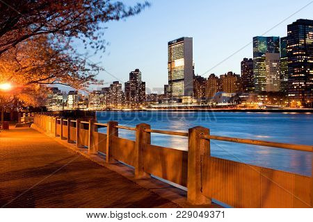 The Shore Of Roosevelt Island And The Skyline Of Midtown, Manhattan, New York City, Usa