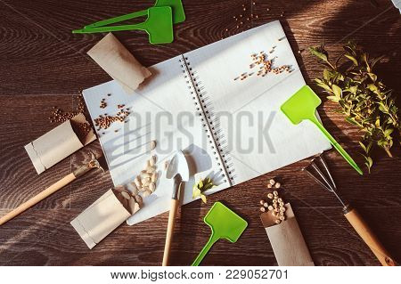 Spring Garden Flat Lay With Seeds In Handmade Envelopes, Note Book, Labels And Tools. Seeding Vegeta