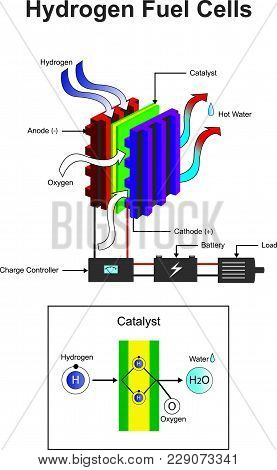 Hydrogen Is A Chemical Element With Chemical Symbol H And Atomic Number 1. Info Graphic.