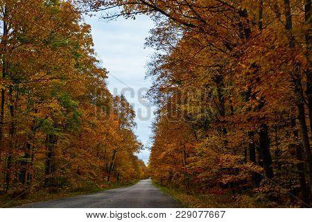 Fall Road In Pictured Rocks National Lakeshore, Munising, Mi, Usa