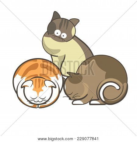 Cute Cartoon Cats And Kittens Sleeping Or Playing And Funny Posing. Vector Isolated Flat Icon Of Red