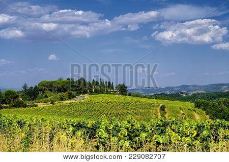 Summer Landscape Near Citta Della Pieve, Perugia, Umbria, Italy