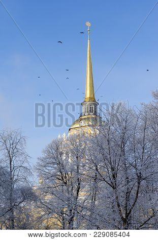 Building With A Gold Spire, Admiralty Building In St. Petersburg, Trees, Snow, Winter, Birds Flying
