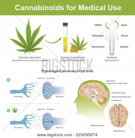Research Has Found That Cannabis Indica Plant Can Have The Following Effects.cannabis It Is Plant Af