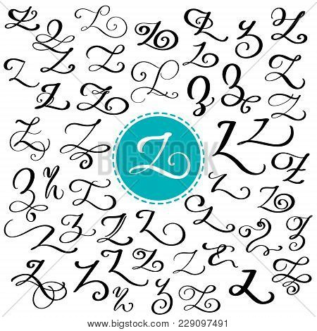 Hand Drawn Vector Calligraphy Letter Z. Script Font. Isolated Letters Written With Ink. Handwritten