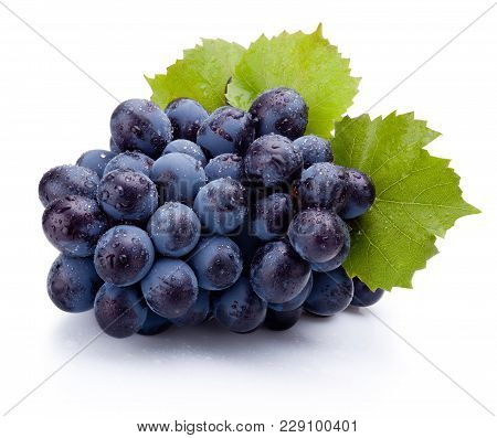 Blue Grapes Wet With Leaves Isolated On White Background