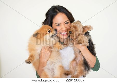 Closeup Portrait Of Smiling Young Attractive Woman Looking At Camera And Holding Yorkshire Terrier A