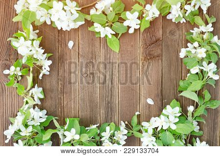 Brown Wooden Background. Flowers Of Apple On The Edge Of The Frame. Place For Text