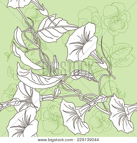 Seamless Pattern With Pansies And Bindweed.vector Illustration