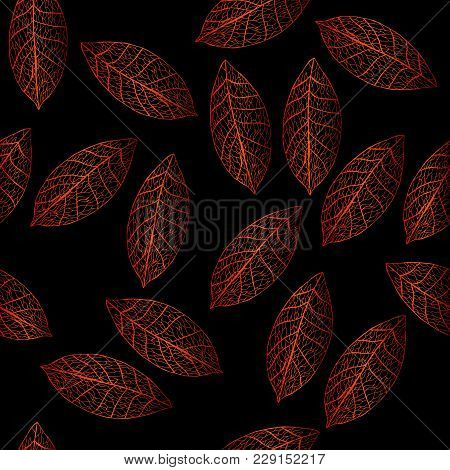 Vector Colored Leaves On Black Field. Winter Botany Illustration.