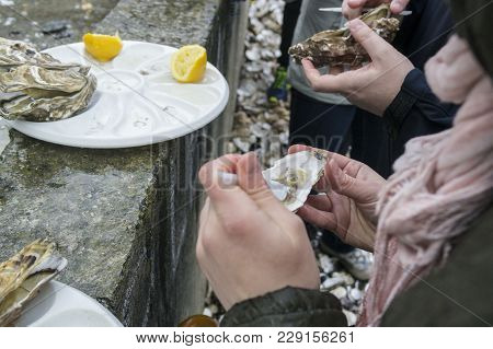 The Man Opens The Oyster And Clean Plastic Knife