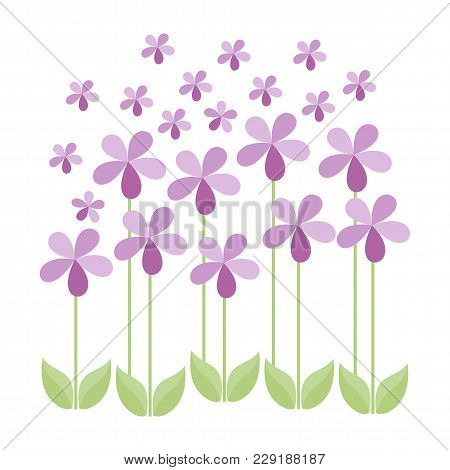 Isolated Floral Design, Pink Flowers, Greeting Card