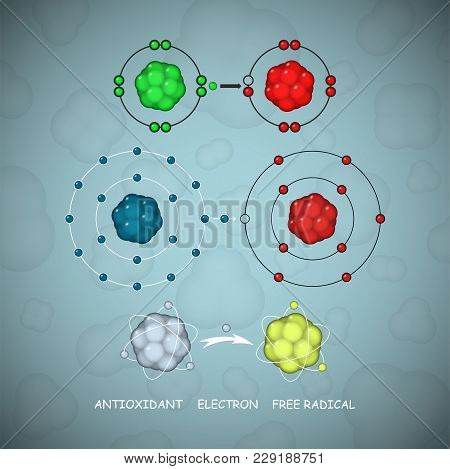 Antioxidant And Free Radical Molecules Or Atoms Vector Set An Illustration Of A Way How Antioxidant