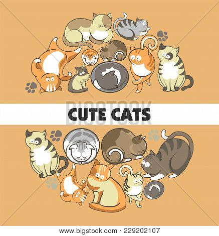 Cute Cartoon Cats And Kittens Playing, Sleeping Or Posing And Frisky Behaving. Vector World Of Cats