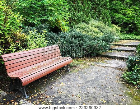 Wooden Bench In A Peaceful Garden In Early Autumn.