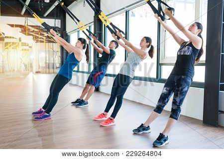 Group Of Fitness Trx Suspension Straps Training Exercises Asian People Doing The Pull Up, Working Wi