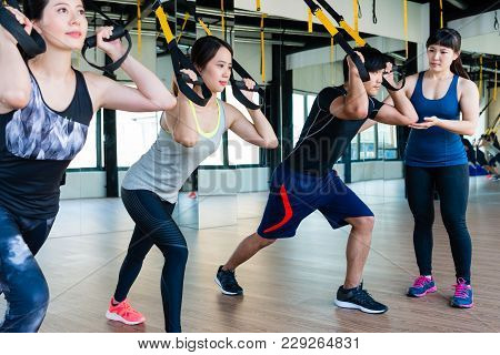 Group Of People Training In Suspension Elastic