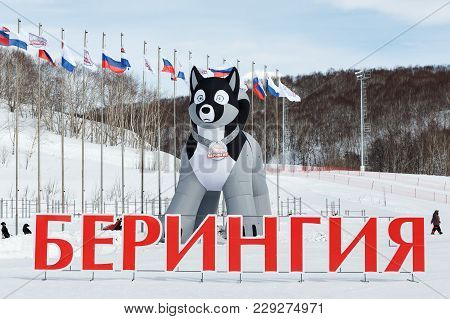 KAMCHATKA PENINSULA, RUSSIA - MARCH 1, 2018: 10-meter pneumatic figure of husky sled dog - symbol of traditional Kamchatka Dog Sled Race Beringia, large inscription in Russian in red letters: