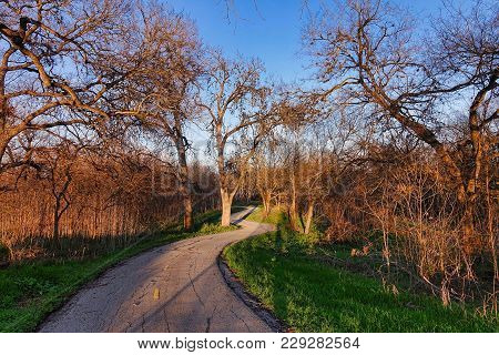 San Antonio, Usa, 2018.02.25.: On The Salado Creek Greenway Trail At San Antonio In The Usa.