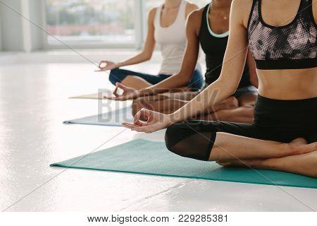 Females Meditating In Padmasana At Yoga Class
