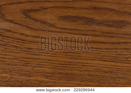 Wooden Texture With Natural Wood Ring Patterns. Hi Res Photo.