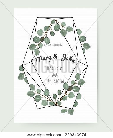 Vector Floral Design Card With Watercolor Eucalyptus Tree Green Leaves Branch Plant Greenery. Natura