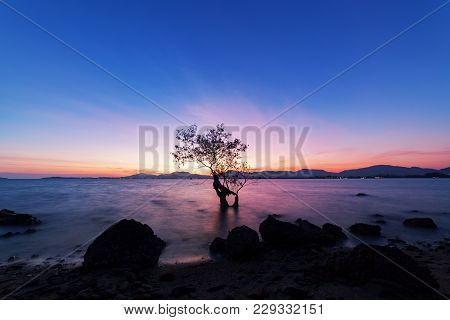 Long Exposure Image Of Dramatic Sunset Or Sunrise,sky Clouds Over Mountain With Alone Tree In Tropic