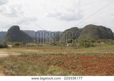 Mogotes In The Viñales Valley In Cuba. Viñales National Park In The Province Of Pinar Del Rio