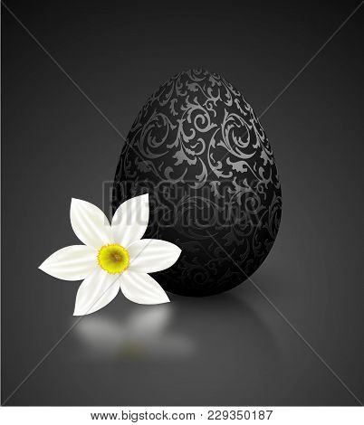 Black Color Mat Realistic Egg With Metallic Floral Pattern. White Narcissus Flower On Black Backgrou
