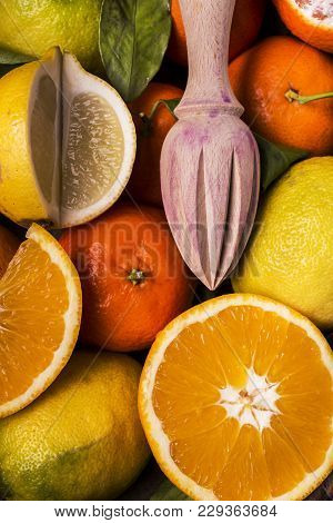 Close-up With Oranges And Mixed Citrus Fruit And Wooden Juicer
