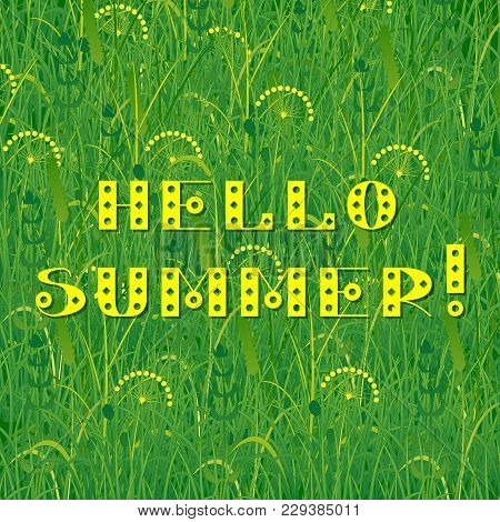 Background Of Grass. Text - Hello Summer. Plants Meadows And Fields. Concept Summer, Nature, Freshne