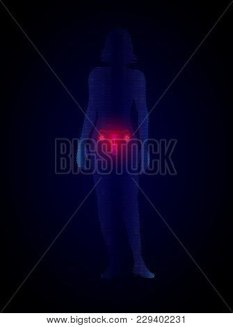 Female Reproductive System. Silhouette Of Woman With Uterus, Disease Of Female Genital Organs Medica