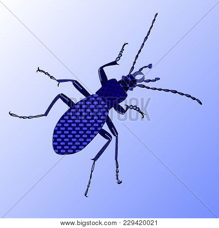Ground Beetle In A Zenart Style, Blue Beetle On A Blue Background