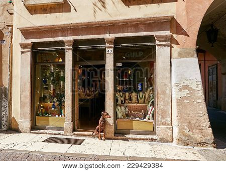 Verona, Italy - August 17, 2017: Narrow Street Of Verona. A Dog Sits At The Shop Window