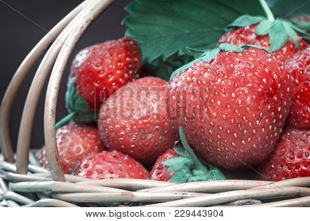 Red Ripe Strawberries With Green Leaves In A Wicker Basket. Submitted Close-up.