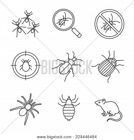 Pest Control Linear Icons Set. Cockroach Searching, Ants, Stop Roaches, Mite Target, Ground Beetle,