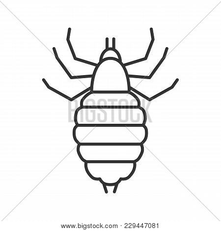 Louse Linear Icon. Thin Line Illustration. Human Parasite. Contour Symbol. Vector Isolated Outline D